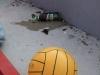 20080630_szezonzaro_012
